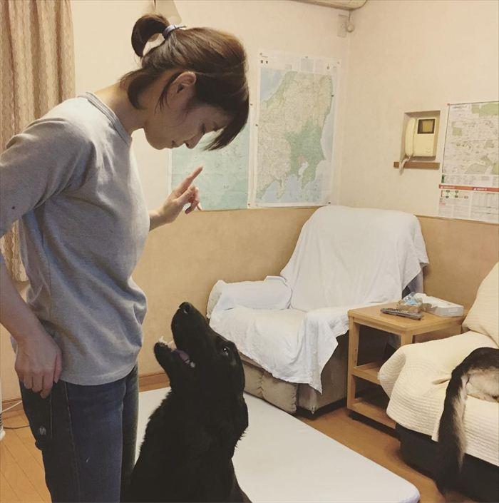 石田ゆりこ 濡れ場画像 045