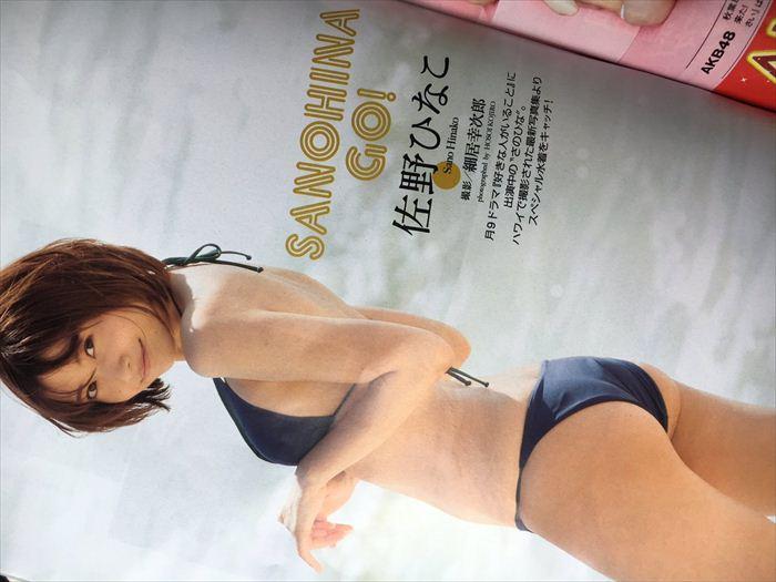 佐野ひなこ エロ画像 044