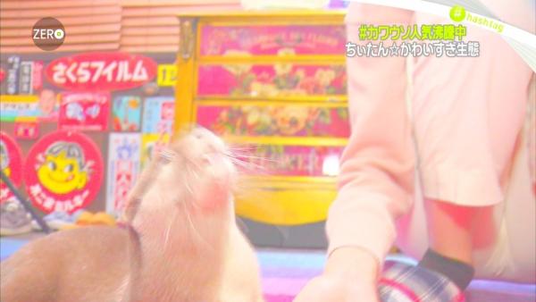 桐谷美玲 マンスジエロ画像028