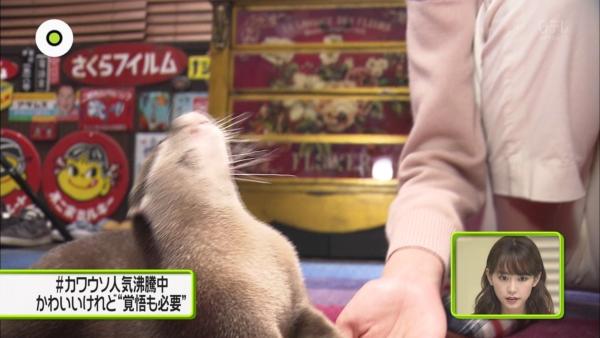 桐谷美玲 マンスジエロ画像043
