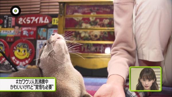 桐谷美玲 マンスジエロ画像044