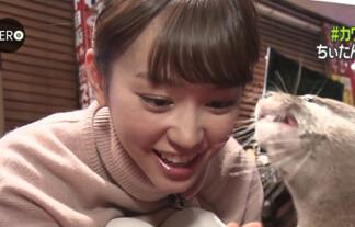(マンスジ)桐谷美玲さん、小動物に夢中で割れ目を晒してしまうwwwwww(えろ写真56枚)