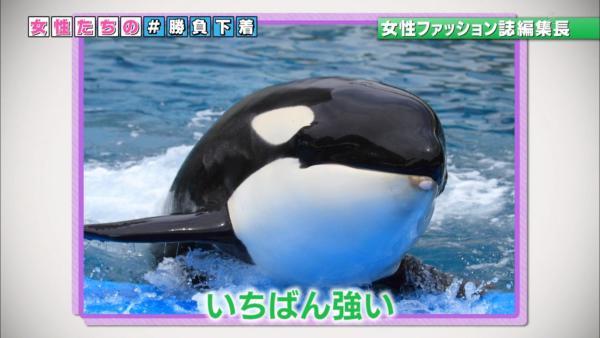 NHK 下着エロ画像060